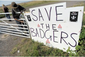 "A sign outside ""Camp Badger"" near Watchet in Somerset where protesters opposed to the badger cull are gathering. PRESS ASSOCIATION Photo. Picture date: Monday August 26, 2013. Photo credit should read: Tim Ireland/PA Wire"
